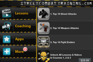 Martial Arts Trainer2